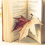 онлайн-стихи, cтихи  и поэмы на заказа через интернет