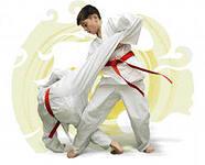 открываем частную школу боевых искусств