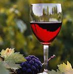 оригинальный бизнес – вино с метеоритом