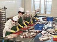 свое дело: цех по переработке рыбы