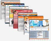 интернет бизнес: создание онлайн магазина по продаже Веб дизайна