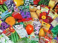 свой бизнес: продажа семян цветов и сопутствующего товара