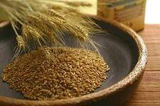 как открыть бизнес по обработке зерна
