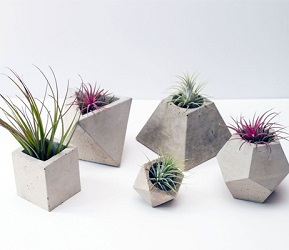 изготовление и продажа дизайнерских кашпо из бетона как идея бизнеса