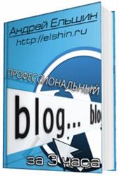 профессиональный блог за 3 часа