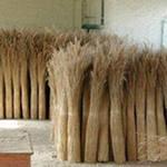 производим изделия из камыша в домашних условиях