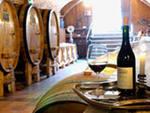 производим и продаем вино