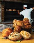мини пекарня - прибыльный бизнес