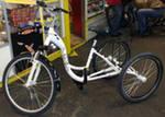 бизнес идея - велосипеды для полных