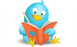 Twitter как социальная площадка для раскрутки себя как бренда